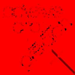 Believe, Pray, Live & Preach
